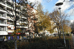 Autumn leaves on trees in front of shops and apartments in Charlottenburg, Berlin, Germany