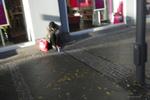 A beggar sits in Wilmersdorfer Strasse, Charlottenburg, Berlin, Germany